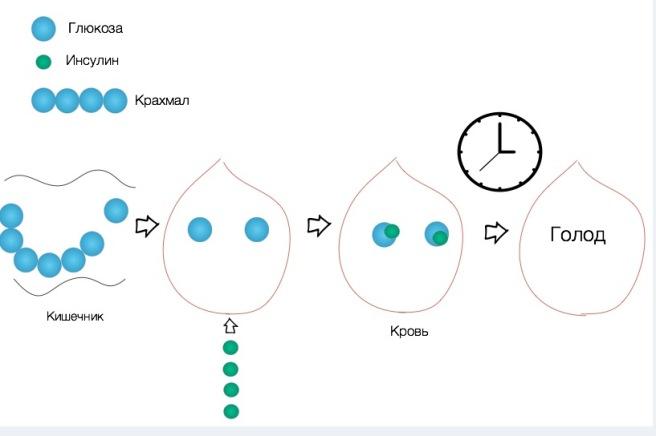 uglevodi-v-pitanii-rebenka-15