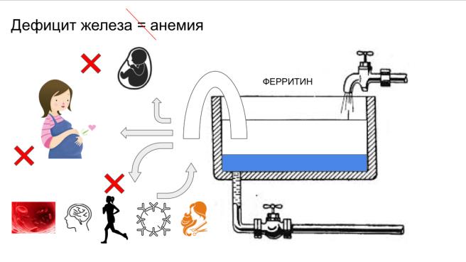 skrytyj-deficit-zheleza-04
