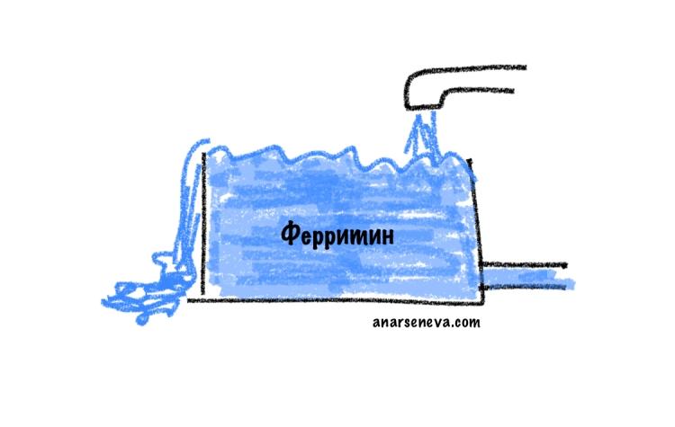 anarseneva.com-ustalost-04